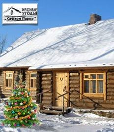 Планируй празднование Нового Года заранее! Рождественские и новогодние туры в