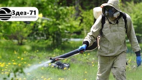 Уничтожение насекомых, грызунов, микроорганизмов и неприятных запахов! Скидки до 20% от службы дезинсекции «3дез-71»!