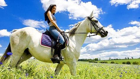 Удивительные прогулки на природе в конном клубе «ПРЕСТИЖ» со скидкой до 50%!